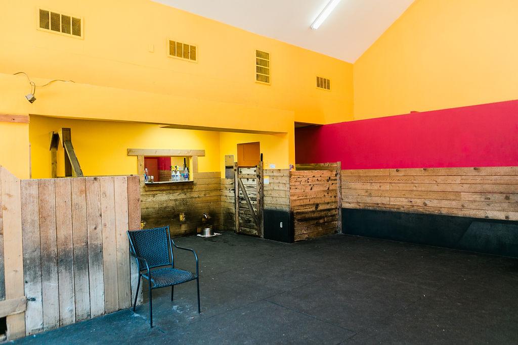 Playroom at Dog Buddies Daycare