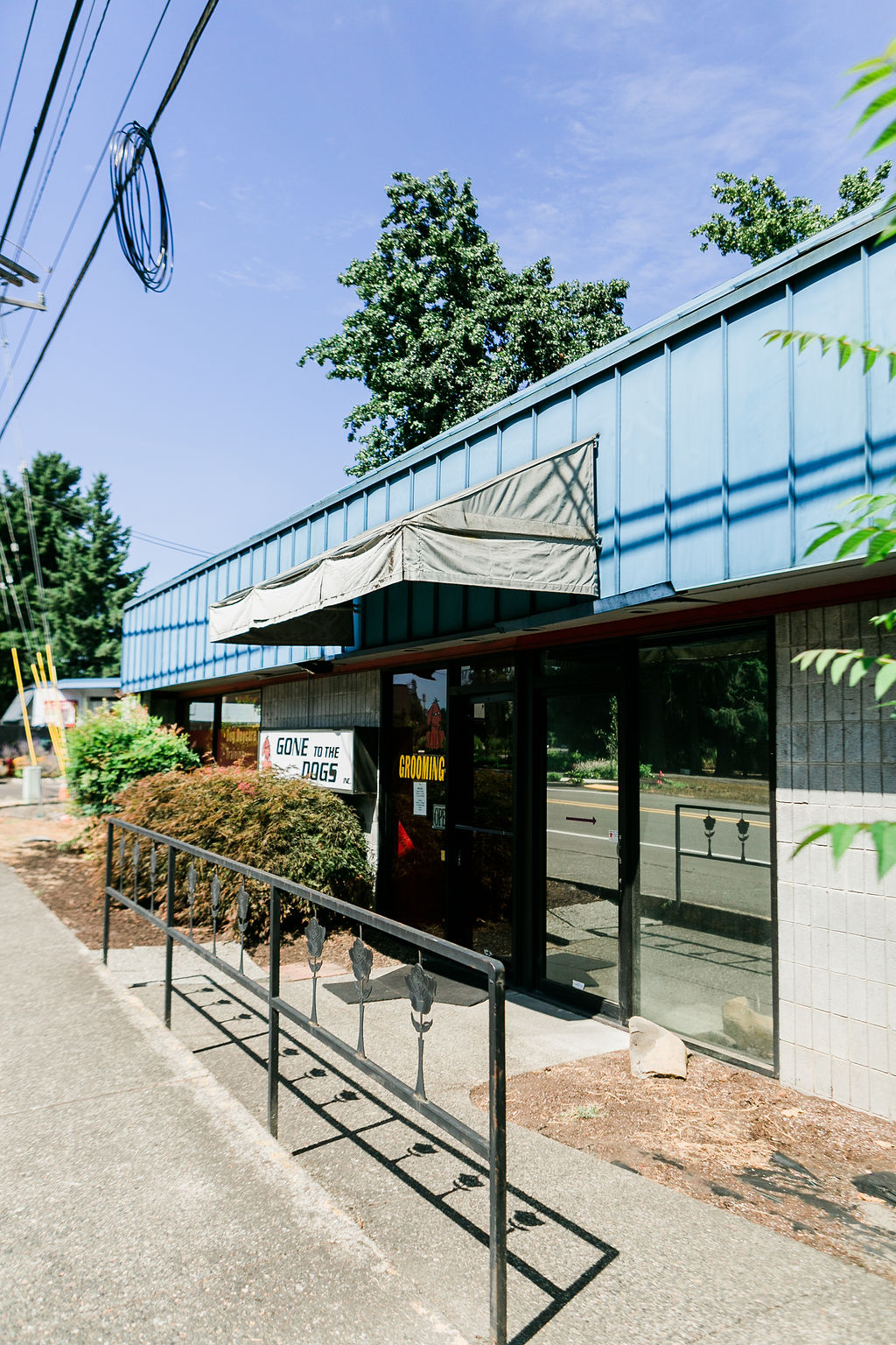 Dog Buddies Daycare Building